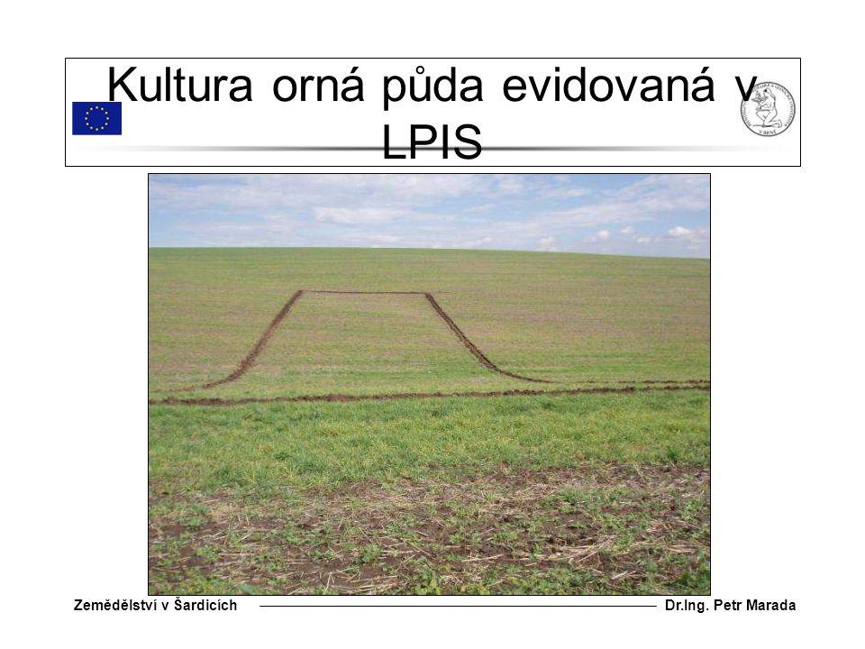 Kultura orná půda evidovaná v LPIS