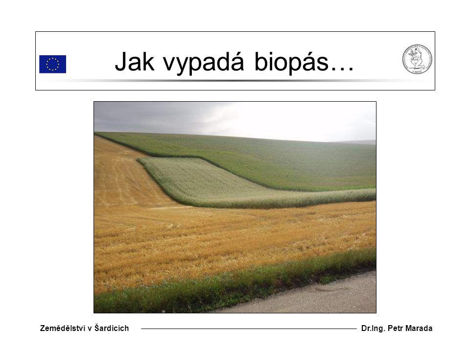 Jak vypadá biopás…