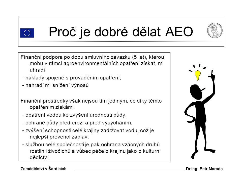 Proč je dobré dělat AEO
