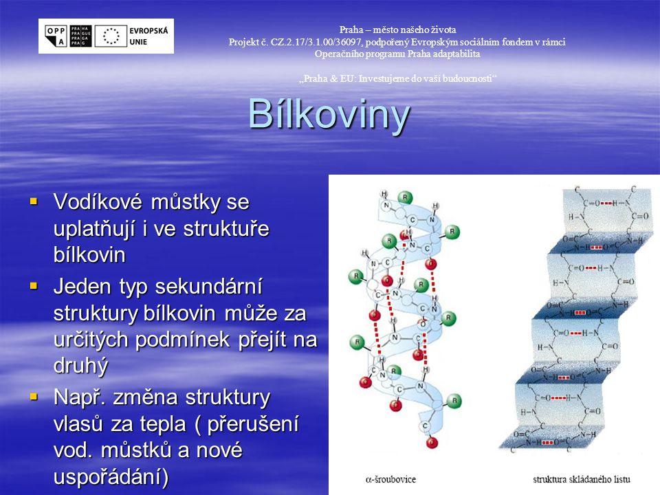 Bílkoviny Vodíkové můstky se uplatňují i ve struktuře bílkovin