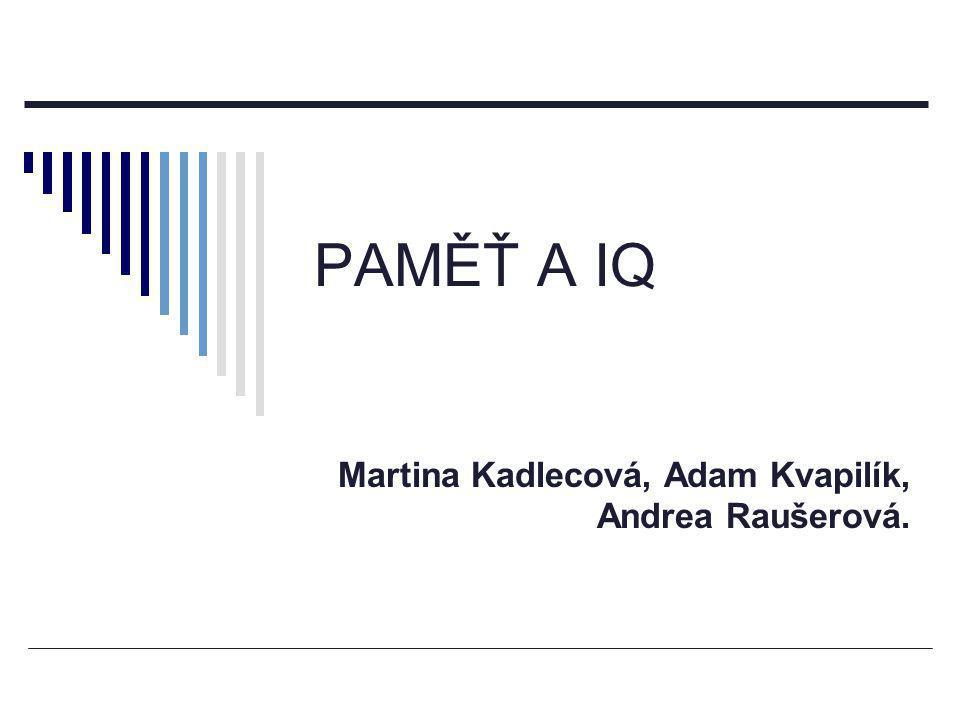 Martina Kadlecová, Adam Kvapilík, Andrea Raušerová.