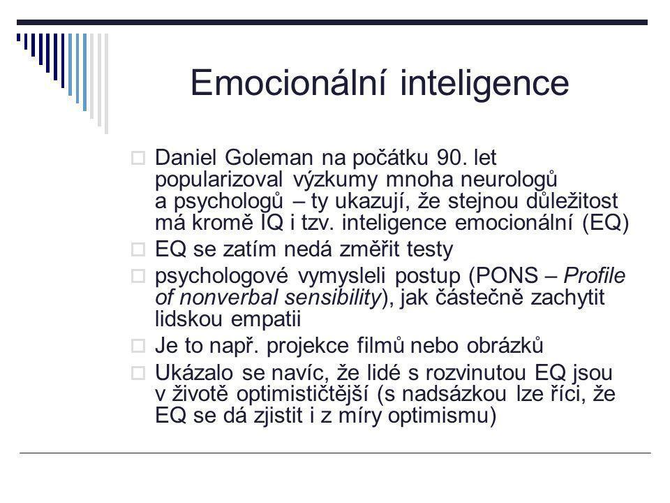 Emocionální inteligence