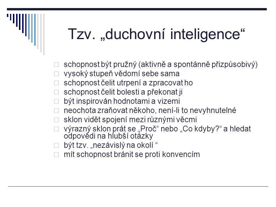 """Tzv. """"duchovní inteligence"""