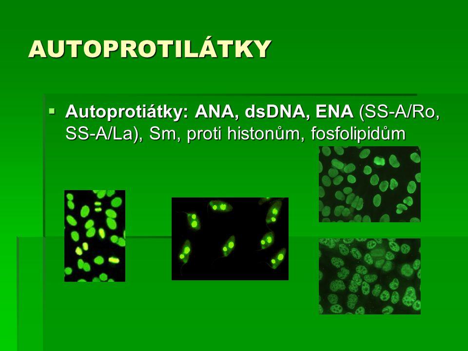 AUTOPROTILÁTKY Autoprotiátky: ANA, dsDNA, ENA (SS-A/Ro, SS-A/La), Sm, proti histonům, fosfolipidům