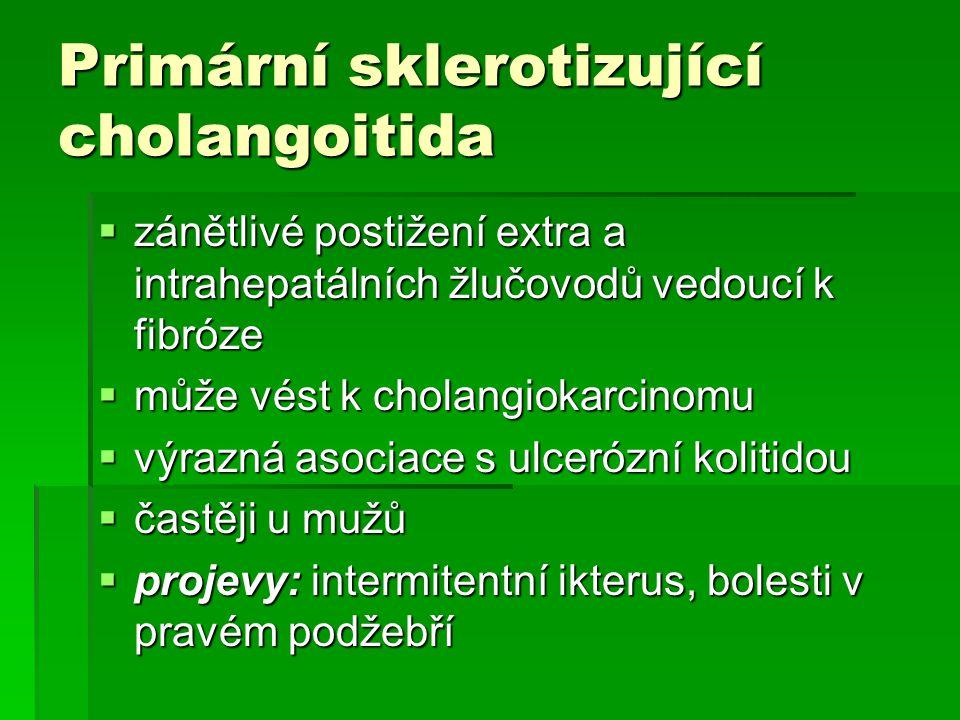 Primární sklerotizující cholangoitida