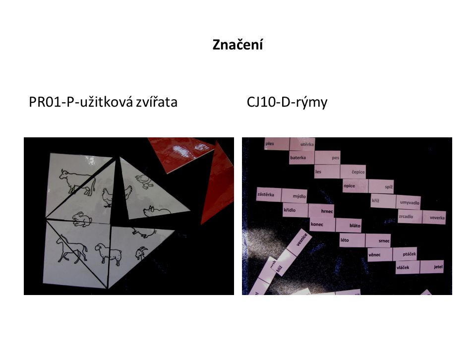 Značení PR01-P-užitková zvířata CJ10-D-rýmy