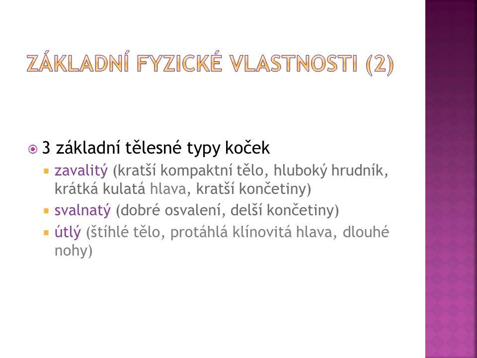 Základní fyzické vlastnosti (2)