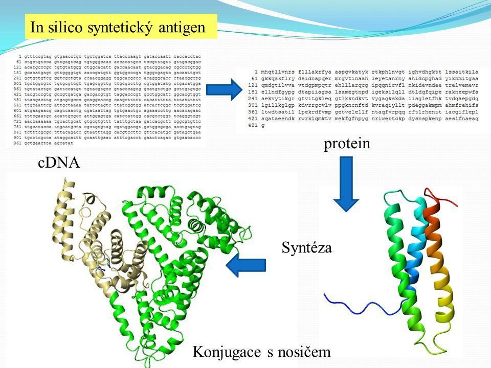 In silico syntetický antigen