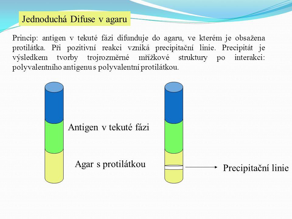 Jednoduchá Difuse v agaru