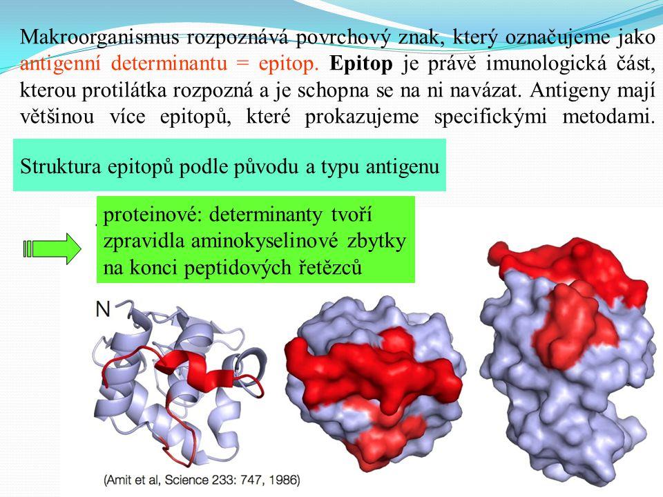 Struktura epitopů podle původu a typu antigenu