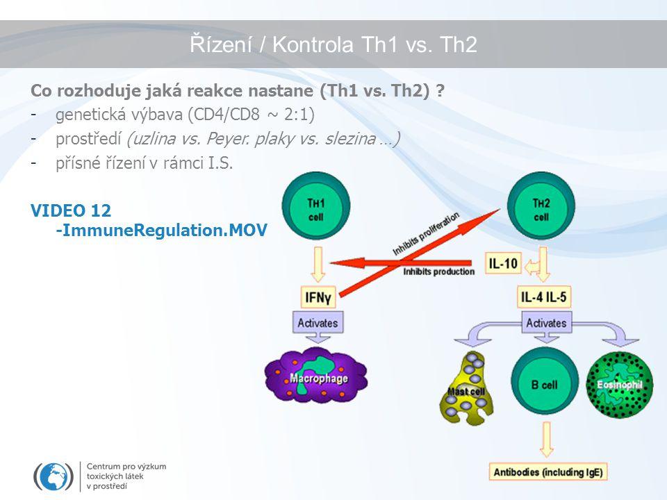 Řízení / Kontrola Th1 vs. Th2