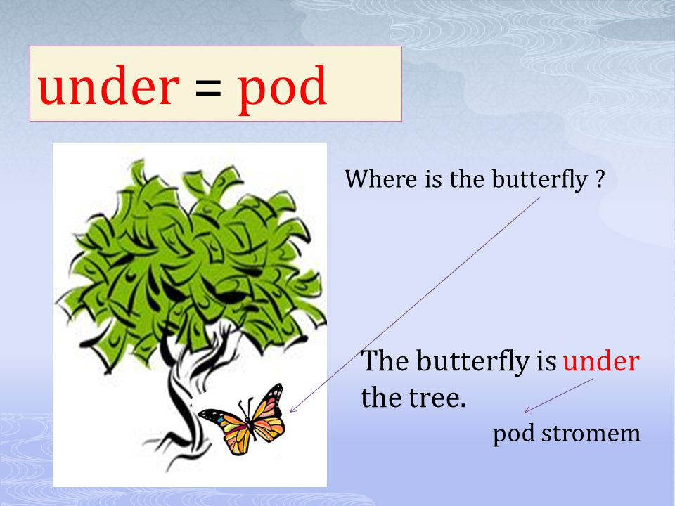 under = pod The butterfly is under the tree. Where is the butterfly