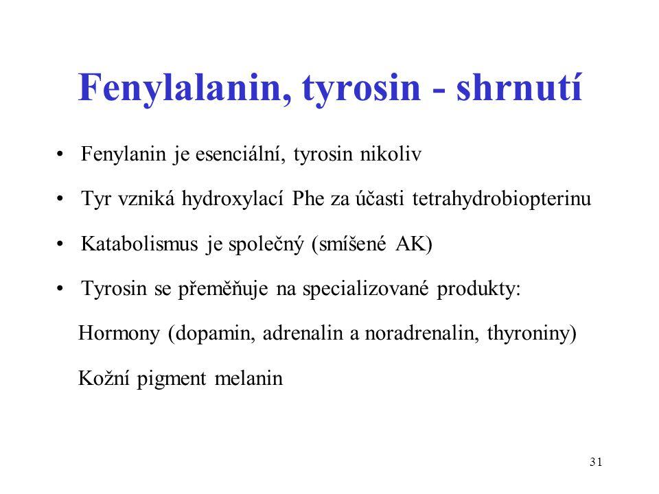 Fenylalanin, tyrosin - shrnutí