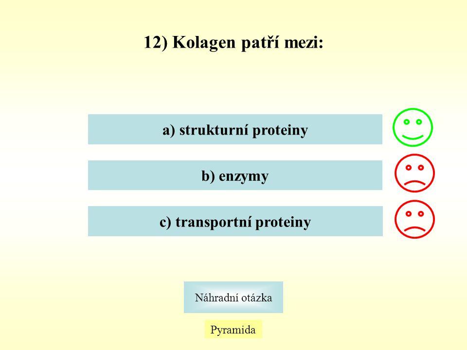 a) strukturní proteiny c) transportní proteiny