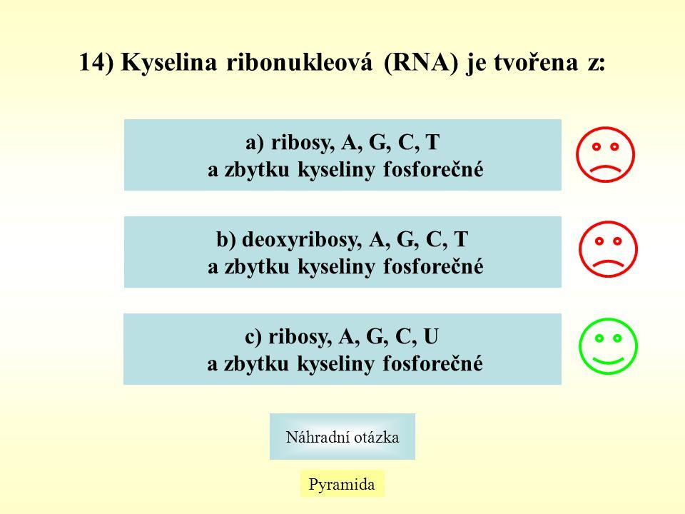 14) Kyselina ribonukleová (RNA) je tvořena z: