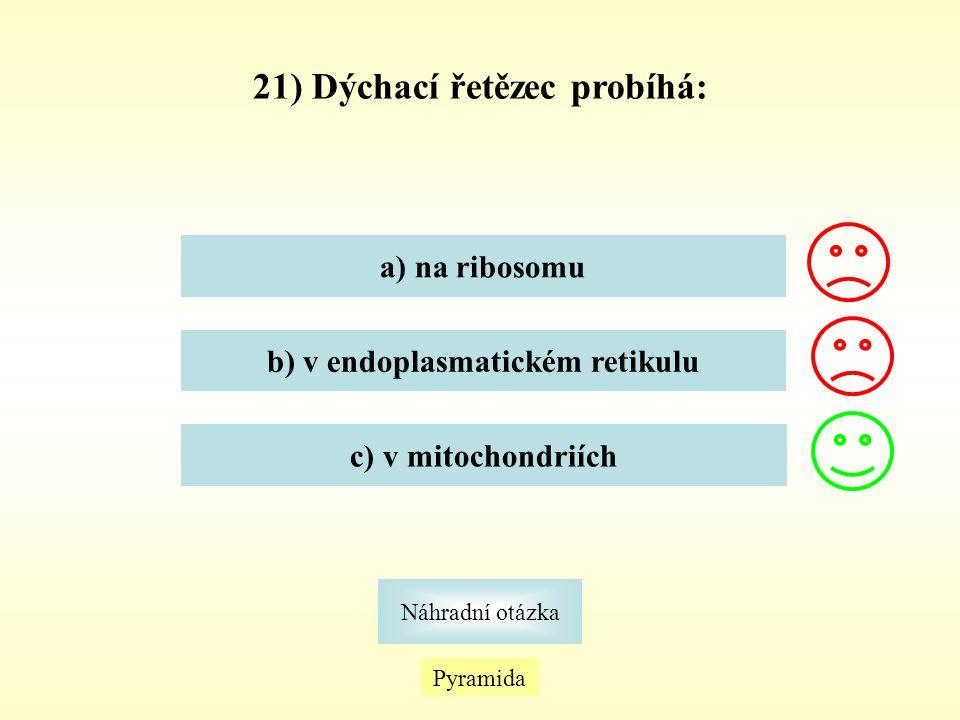 21) Dýchací řetězec probíhá: b) v endoplasmatickém retikulu