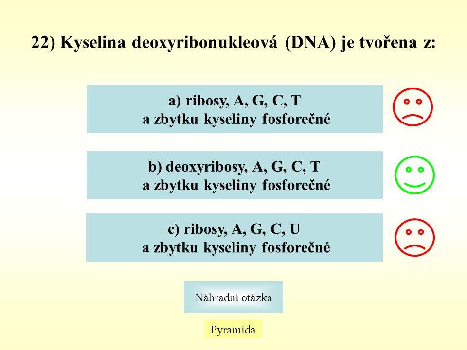 22) Kyselina deoxyribonukleová (DNA) je tvořena z: