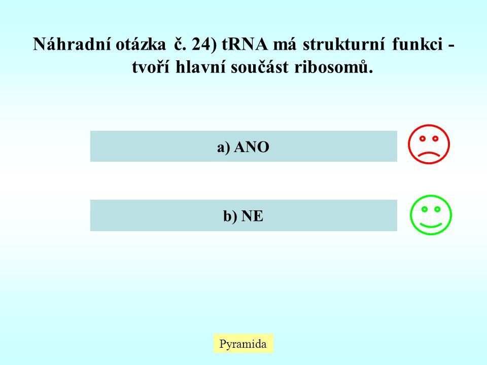 Náhradní otázka č. 24) tRNA má strukturní funkci - tvoří hlavní součást ribosomů.