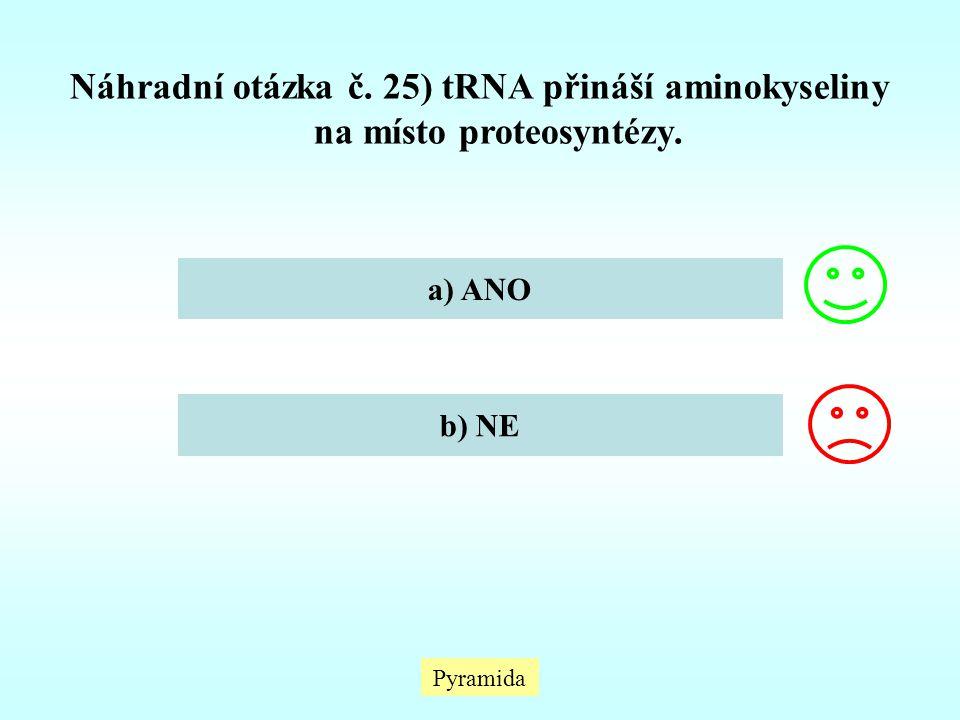 Náhradní otázka č. 25) tRNA přináší aminokyseliny na místo proteosyntézy.