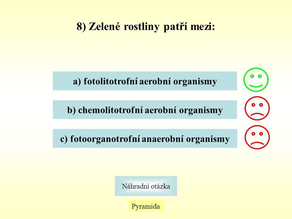 8) Zelené rostliny patří mezi: