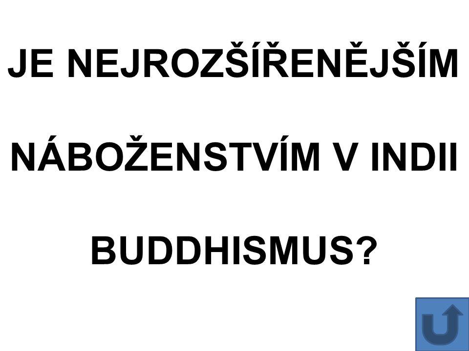 JE NEJROZŠÍŘENĚJŠÍM NÁBOŽENSTVÍM V INDII BUDDHISMUS