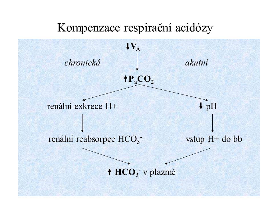 Kompenzace respirační acidózy