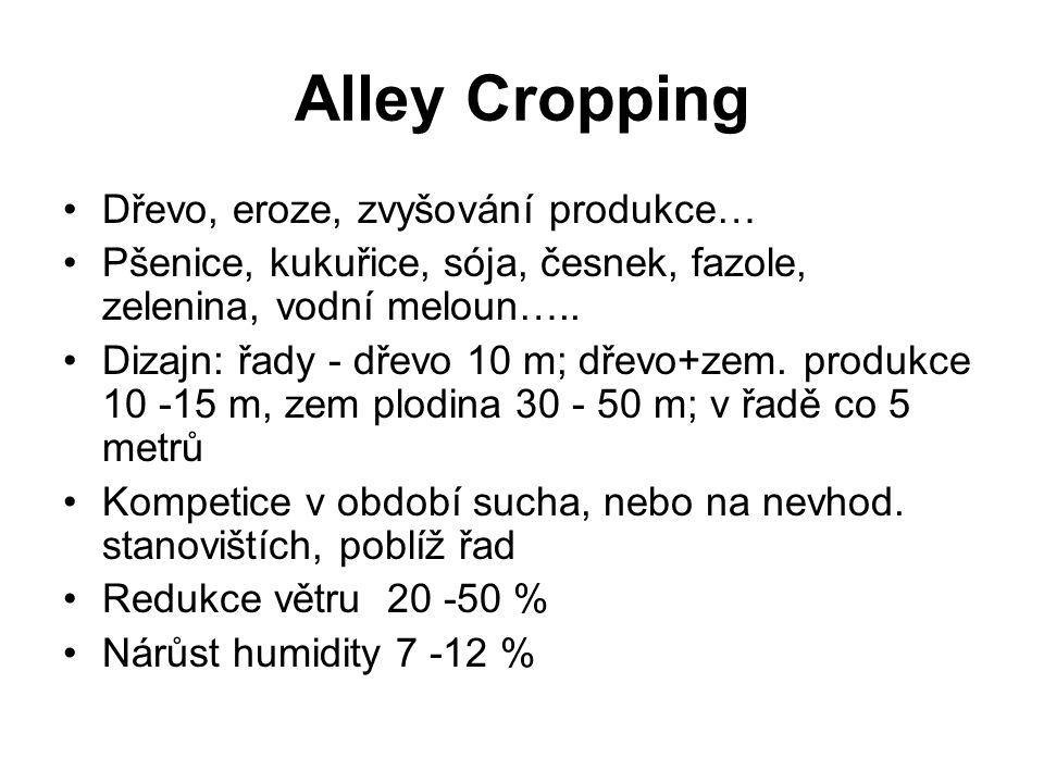 Alley Cropping Dřevo, eroze, zvyšování produkce…