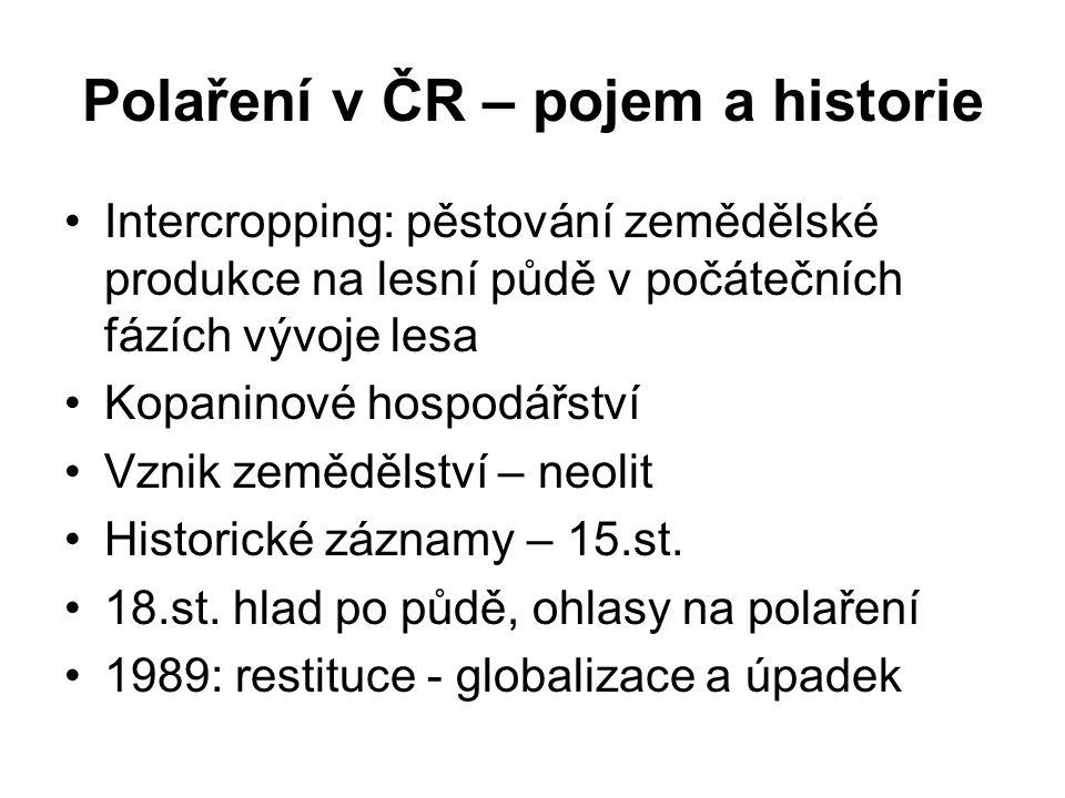 Polaření v ČR – pojem a historie