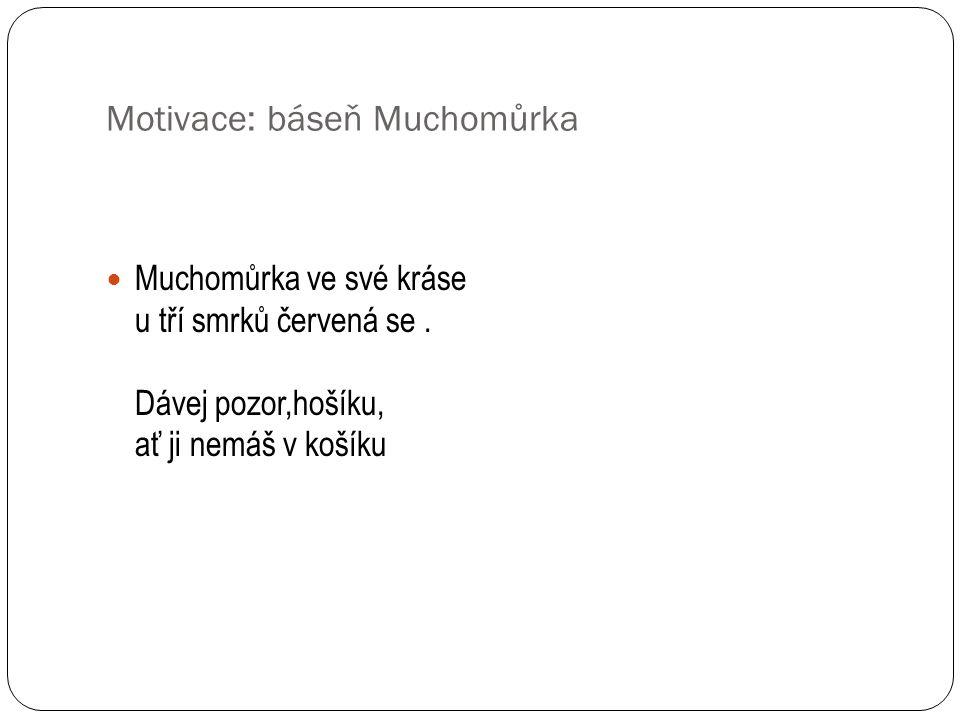 Motivace: báseň Muchomůrka