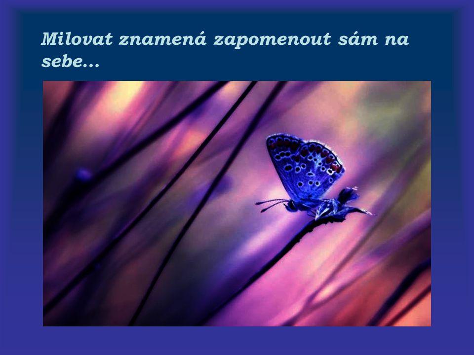 Milovat znamená zapomenout sám na sebe…