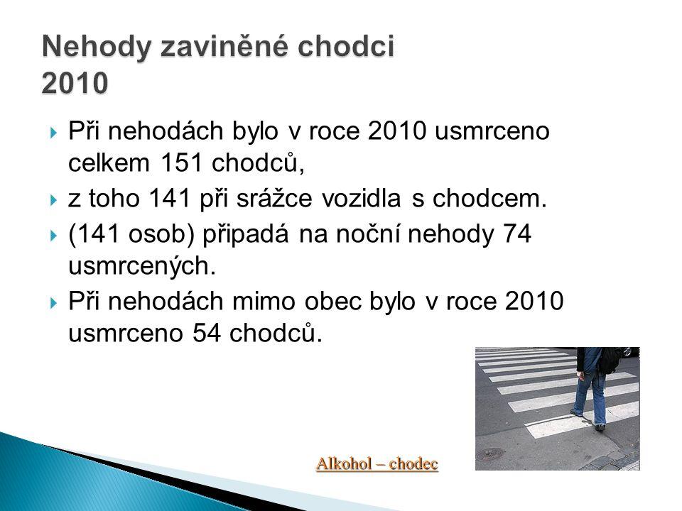Nehody zaviněné chodci 2010