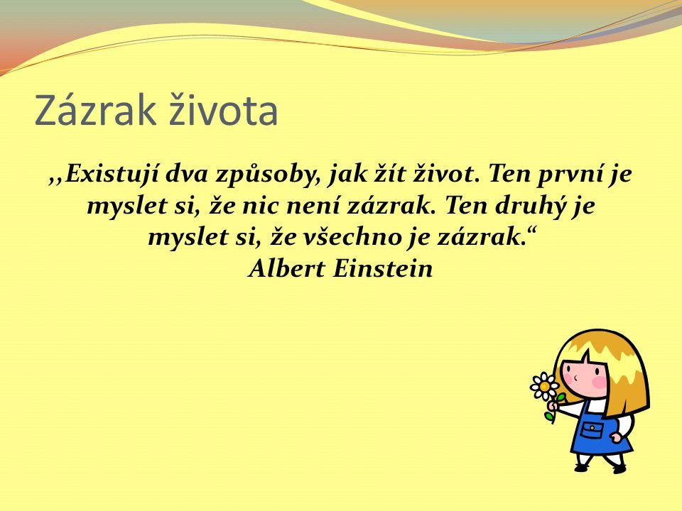 Zázrak života ,,Existují dva způsoby, jak žít život. Ten první je myslet si, že nic není zázrak. Ten druhý je myslet si, že všechno je zázrak.