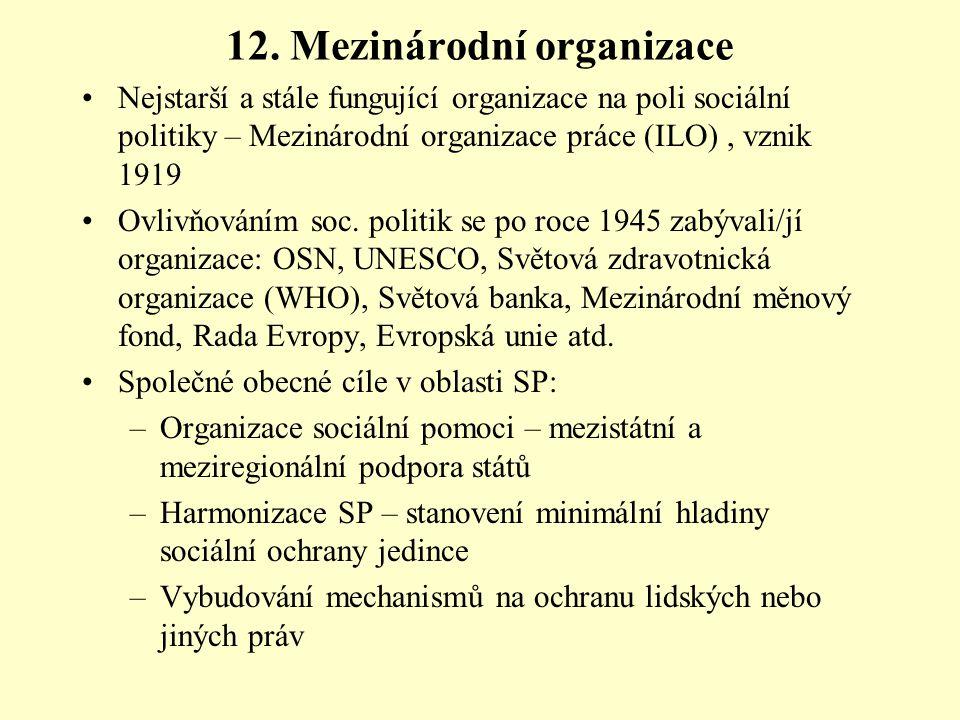 12. Mezinárodní organizace