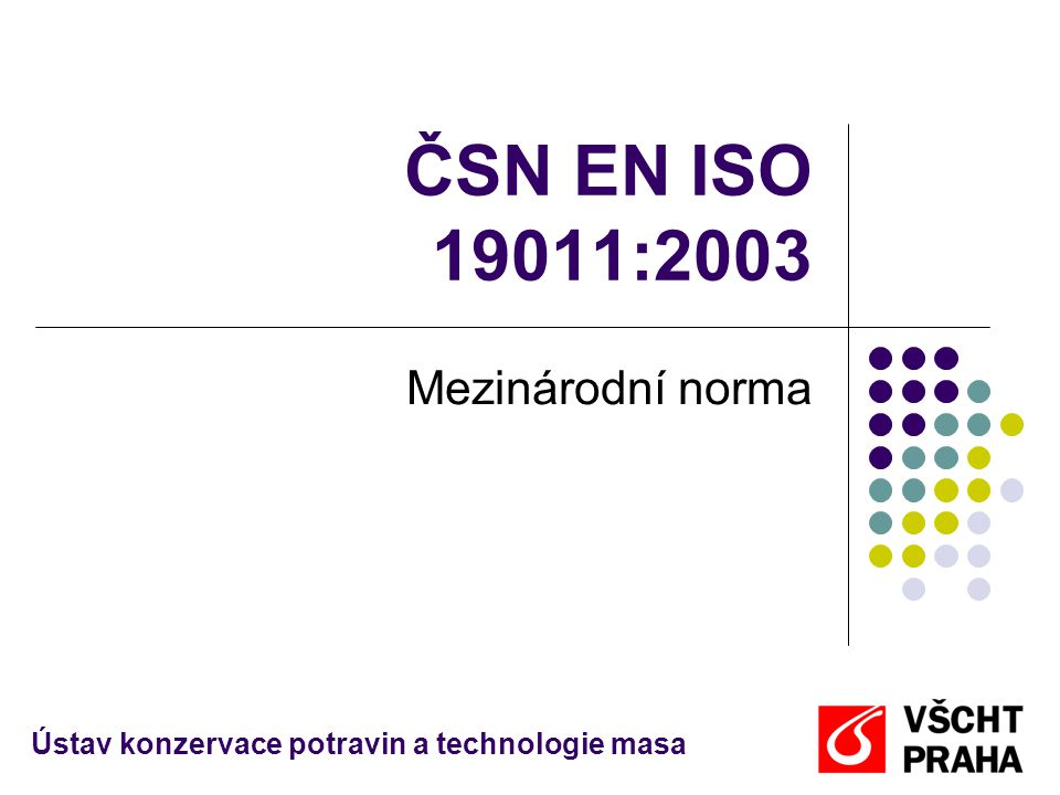 ČSN EN ISO 19011:2003 Mezinárodní norma