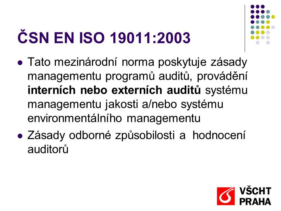 ČSN EN ISO 19011:2003