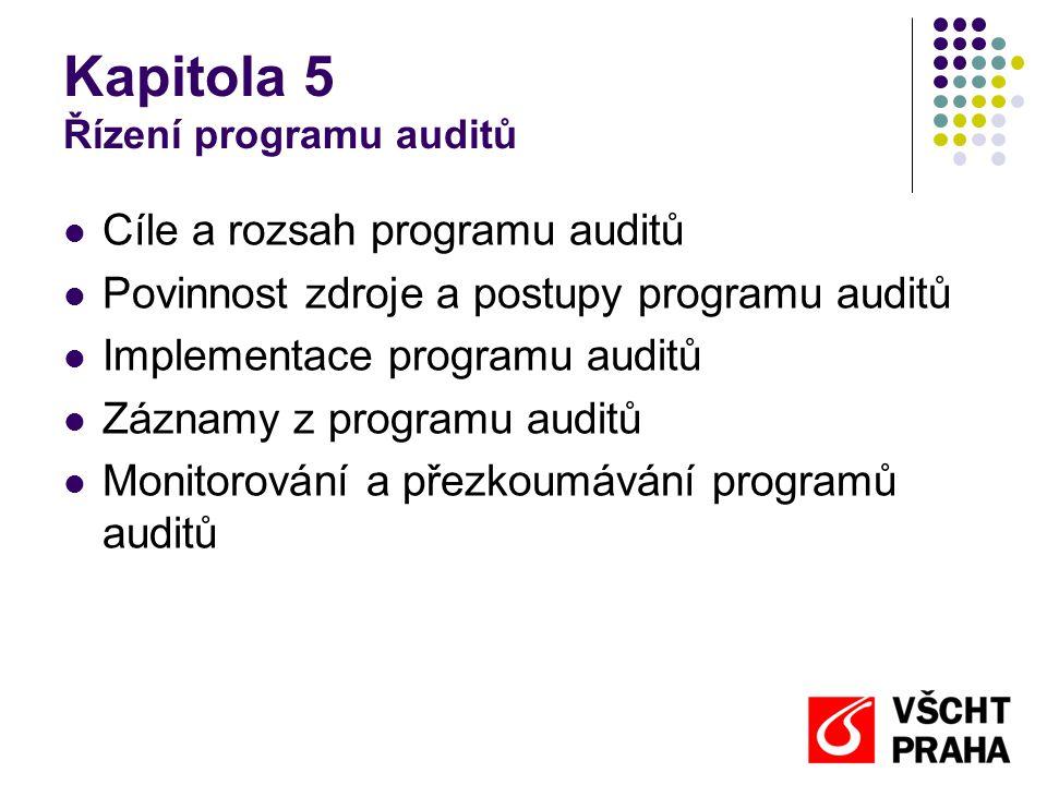 Kapitola 5 Řízení programu auditů