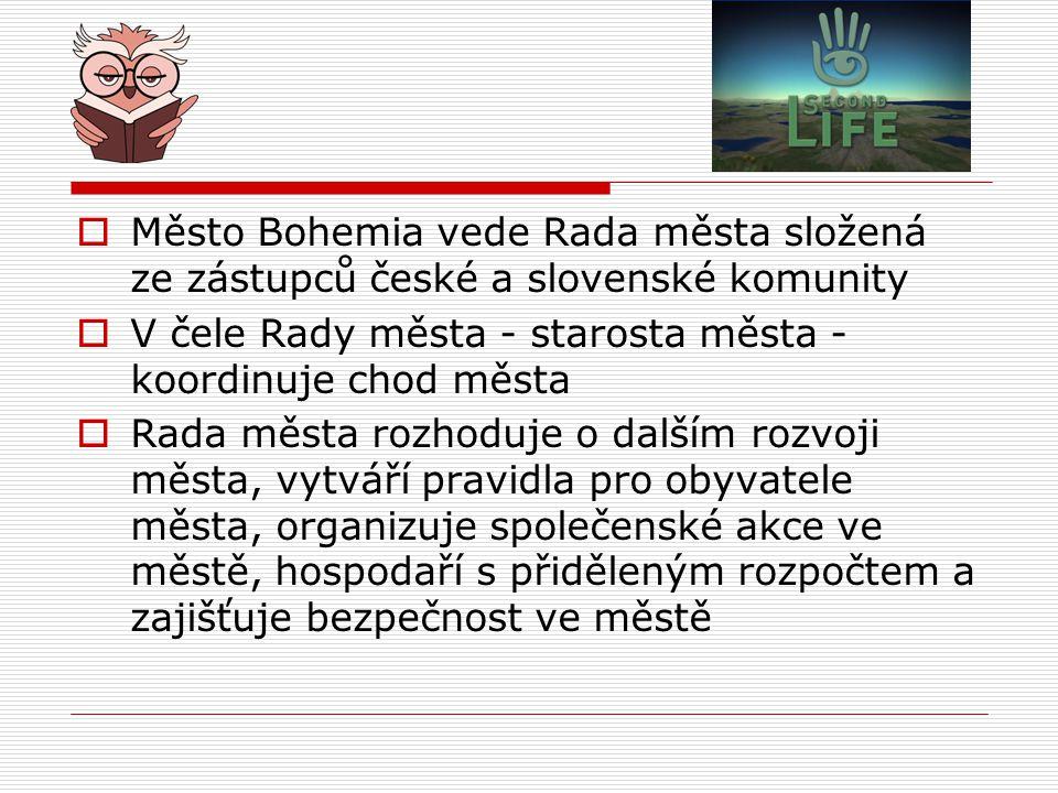 Město Bohemia vede Rada města složená ze zástupců české a slovenské komunity
