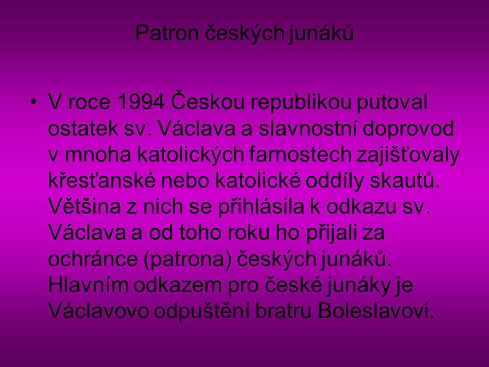 Patron českých junáků
