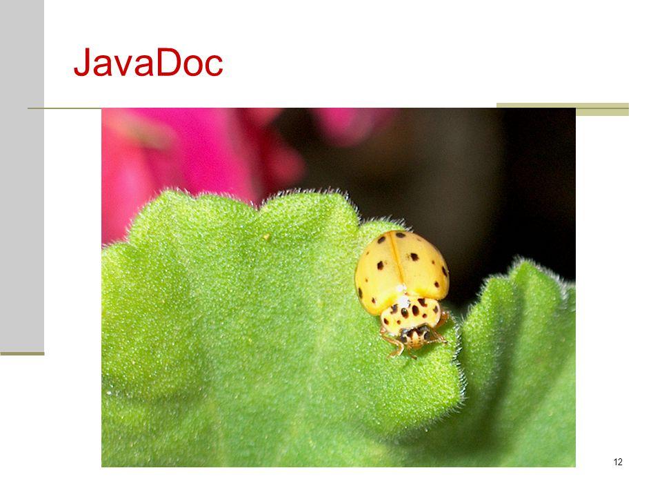JavaDoc Java cv10