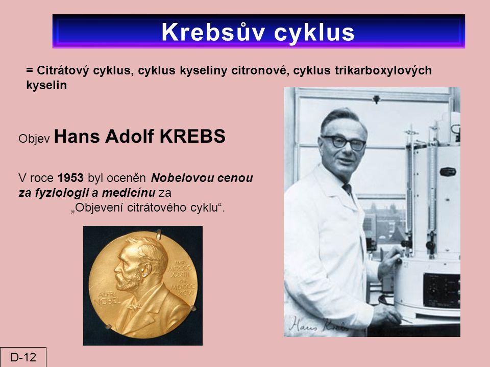 Krebsův cyklus = Citrátový cyklus, cyklus kyseliny citronové, cyklus trikarboxylových kyselin. Objev Hans Adolf KREBS.