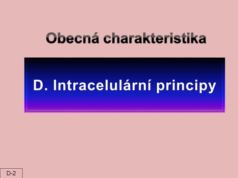 Obecná charakteristika D. Intracelulární principy