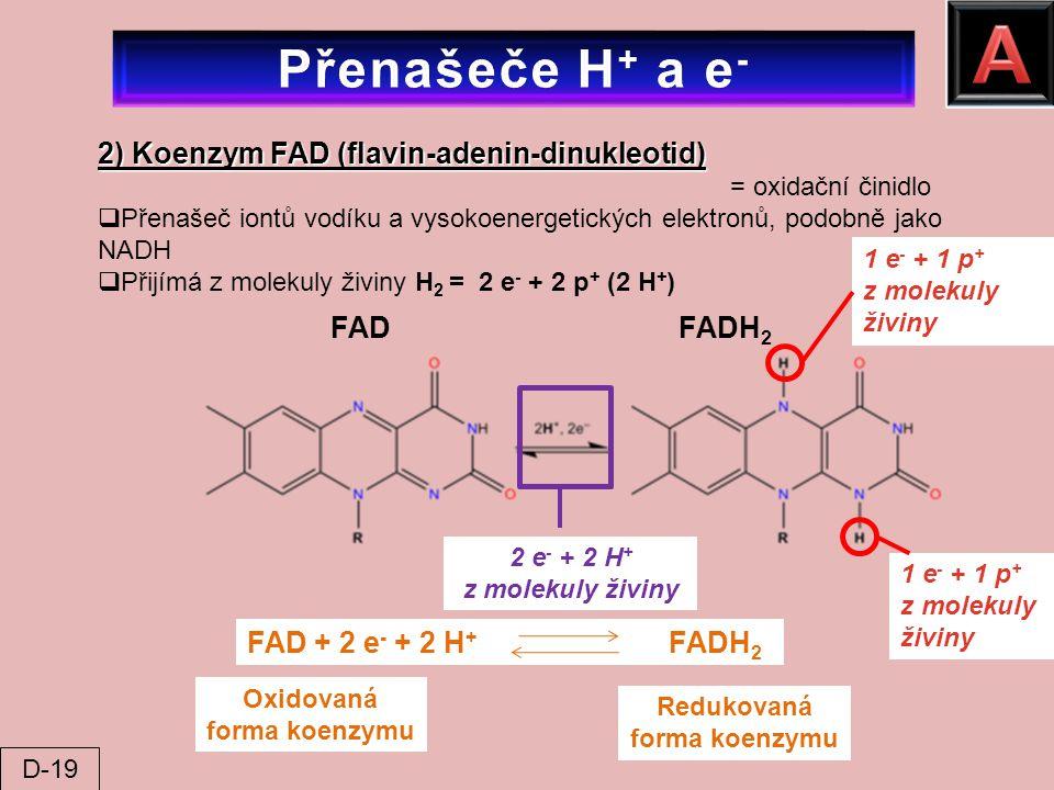 Oxidovaná forma koenzymu Redukovaná forma koenzymu