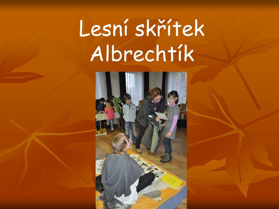 Lesní skřítek Albrechtík
