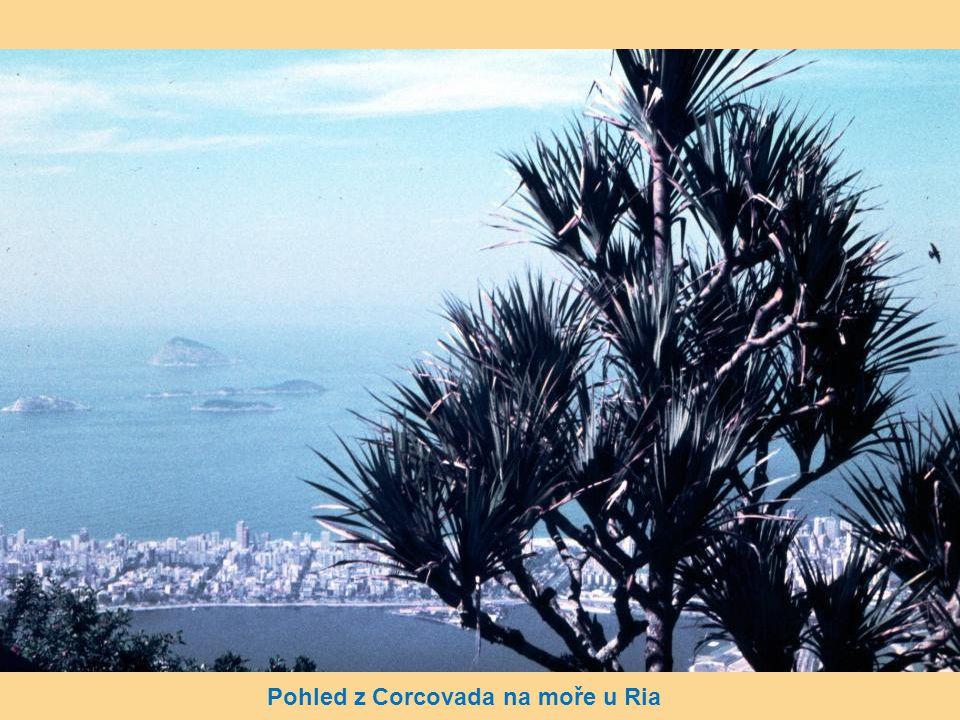 Pohled z Corcovada na moře u Ria