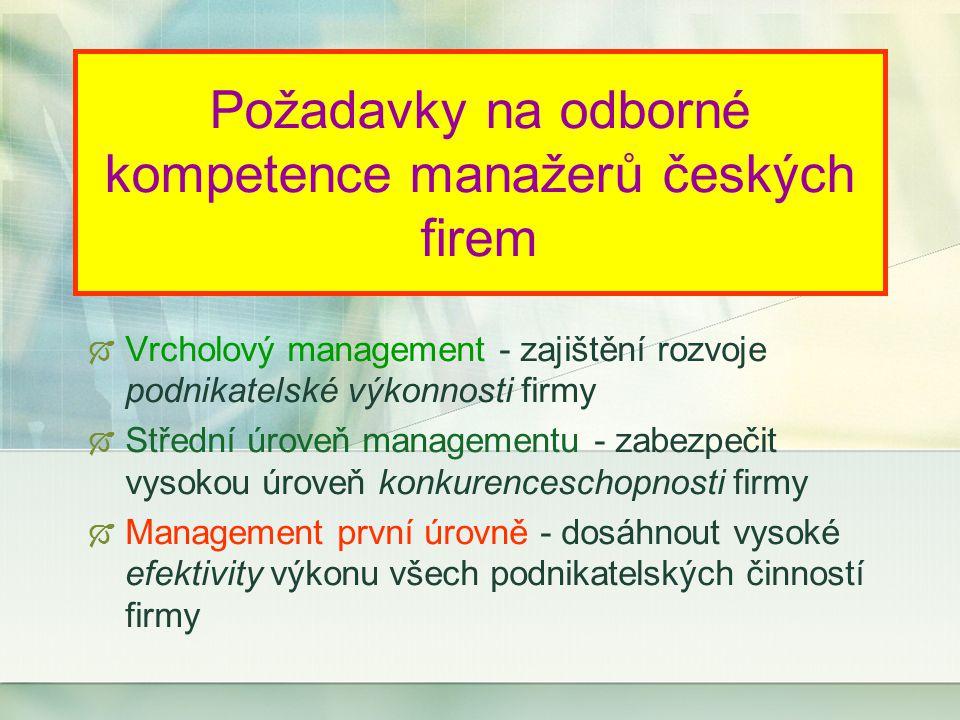 Požadavky na odborné kompetence manažerů českých firem