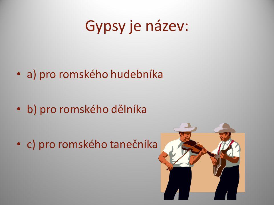 Gypsy je název: a) pro romského hudebníka b) pro romského dělníka
