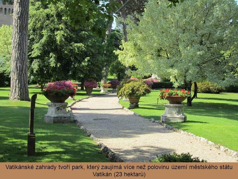 Vatikánské zahrady tvoří park, který zaujímá více než polovinu území městského státu Vatikán (23 hektarů)