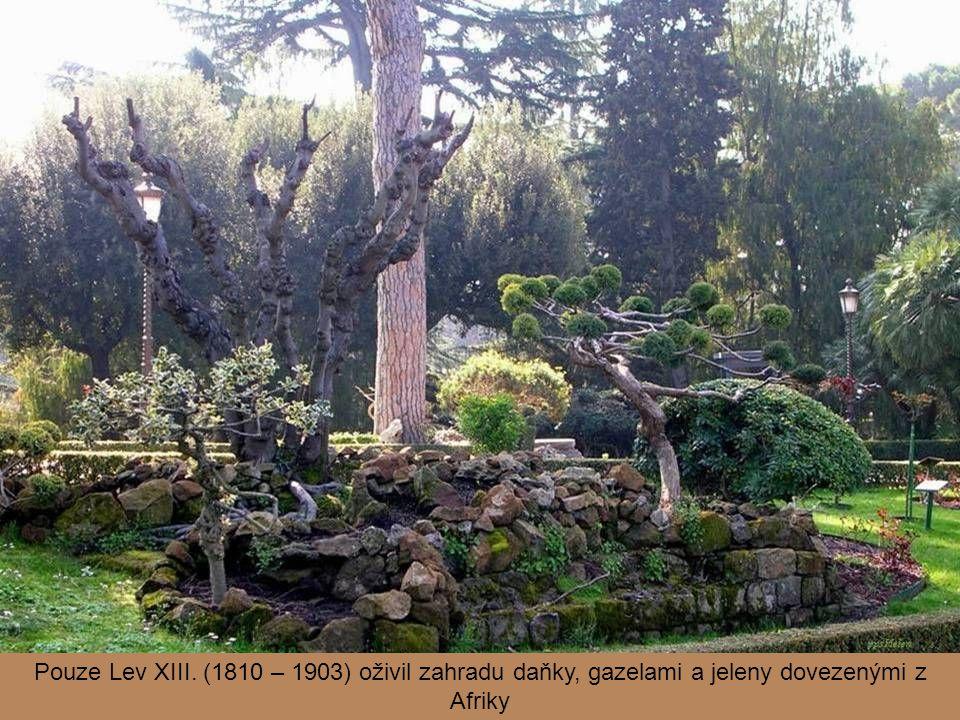 Pouze Lev XIII. (1810 – 1903) oživil zahradu daňky, gazelami a jeleny dovezenými z Afriky