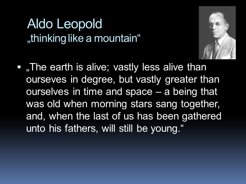 "Aldo Leopold ""thinking like a mountain"