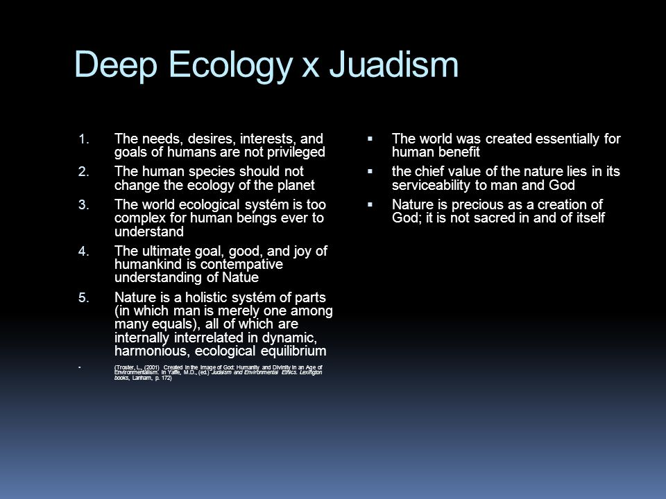 Deep Ecology x Juadism The needs, desires, interests, and goals of humans are not privileged.